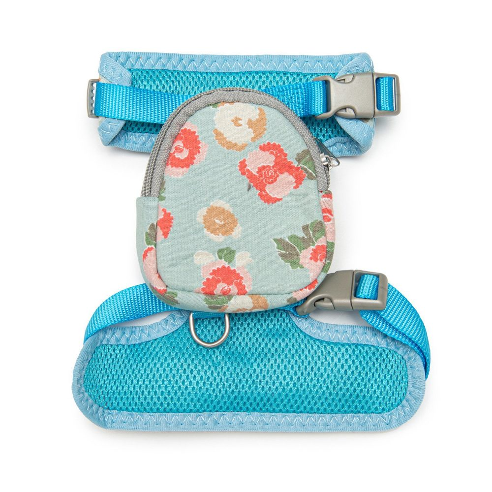 Dolce Harness & Bacpack